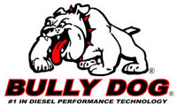 SCT and Bully Dog Companies Merge